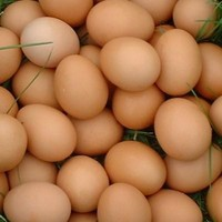 WHITE AND BROWN FRESH CHICKEN TABLE EGGS