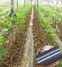 professional agriculture drip irrigation equipment manufacturers