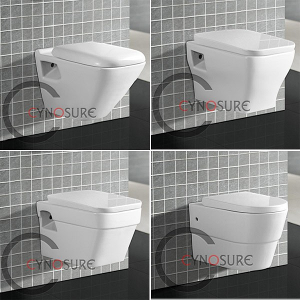 CY3601-China sanitary ware manufacturer one piece WC bathroom Wall hung toilet