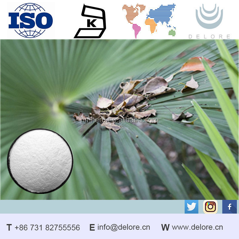 Saw Palmetto Extract plant extract saw palmetto fruit extract