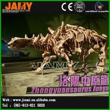 Exhibition Life Size Dinosaur Skeleton Fossil