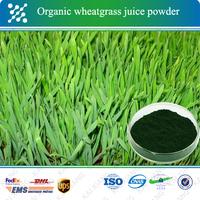 Best Selling natural green barley grass powder organic wheatgrass juice
