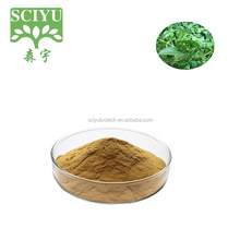 Pure Mesona Chinensis extract / Grass jelly Leaves Extract / Mesona Chinensis Powder