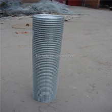 carbon steel 1/2 inch plastic coated welded wire mesh