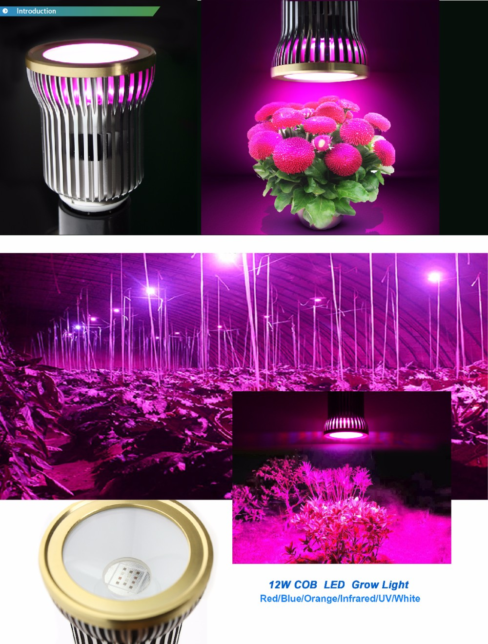 New design IP44 12W COB Series Greenhouse Vegetable Flower led grow light with full spectrum 2Years