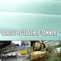 haired pig grain hide with fabric wet salted hides for making bags leather from china