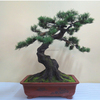 /product-detail/high-quality-artificial-pine-tree-creative-modeling-pine-tree-bonsai-for-indoor-and-outdoor-decoration-60741321457.html