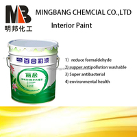 Interior wall water based emulsion paint