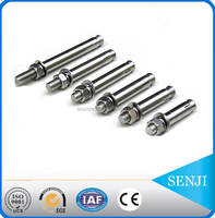 Stainless Steel m8 m10 m12 m16 m24 anchor bolt weight and price