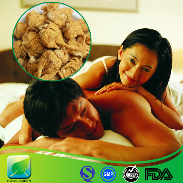 High Quality Maca Extract Powder Male Aphrodisiac in Stock