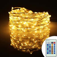 China factory direct sale waterproof different length remote Christmas decorations led string light