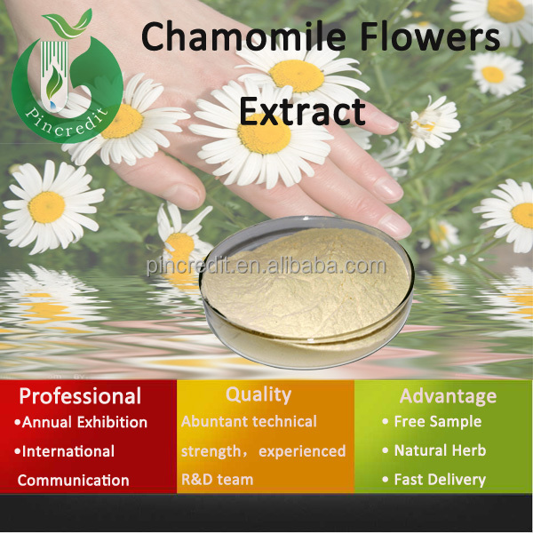 wild Chamomile Extract/Anthemis Nobilis Extract high purity apigenin/Chamomile Flowers Extract