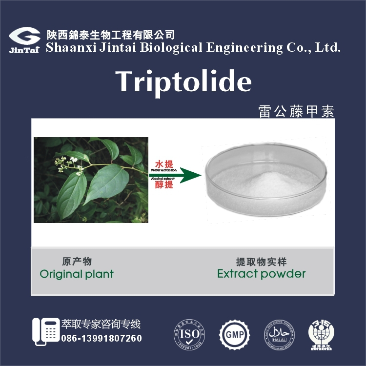high quality CAS No. 38748-32-2 thunder god vine extract 98% triptolide powder