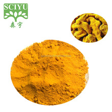 Food Grade Supplement Turmeric Extract Curcumin 90% 95%