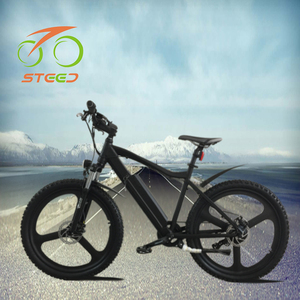 Long wise 250 w hub motor China mountain electric bicycle 2018 hot sale