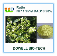 Rutin---Free Sample ISO Supplier 100% Pure Natural Rutin NF11/DAB10/EP6 Sophora Japonica Extract