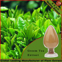 Pure Natural Green Tea Extract Tea Polyphenol,Catechin,EGCG