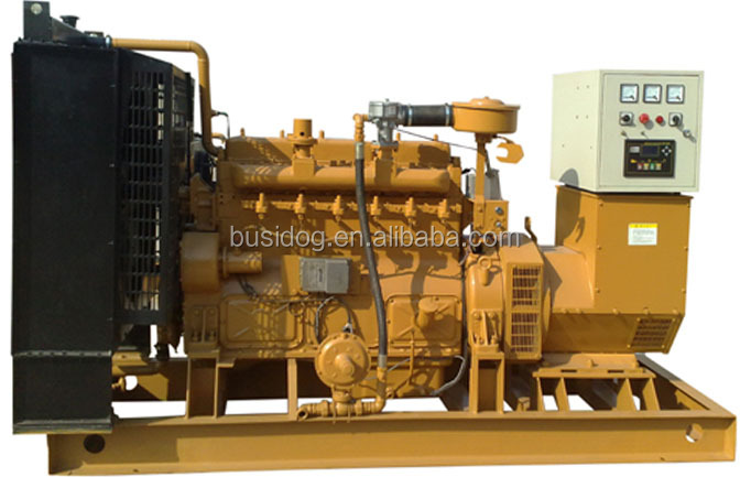 CE& ISO Approved 100-3000kw Biomass Generator /Wood Chips/Sawdust Biomass Gasification Power Plant Manufacture Price