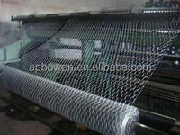 hexagonal wire mesh electro galvanized wire mesh from Anping factory