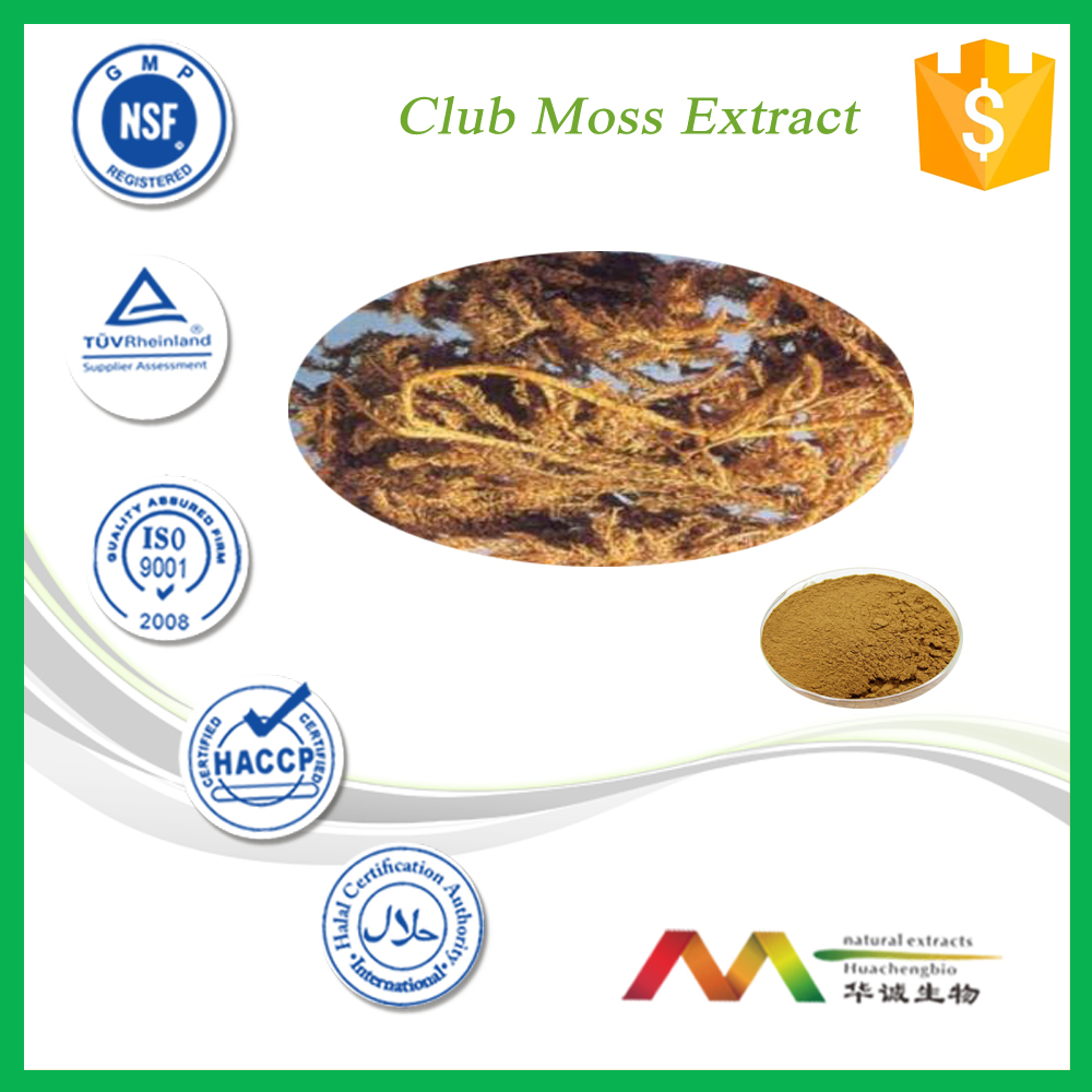 Chinese Manufacture Supply Club Moss Extract