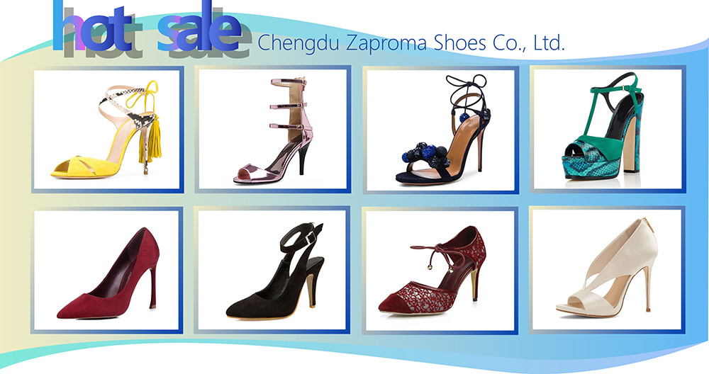 Zaproma Wholesale Modern Fancy Elegance Ladies Flexible Flat Women Leather Sole Dance Shoes