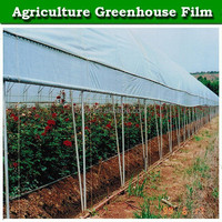 transparent woven plastic film for greenhouse 200 micron greenhouse film for sale