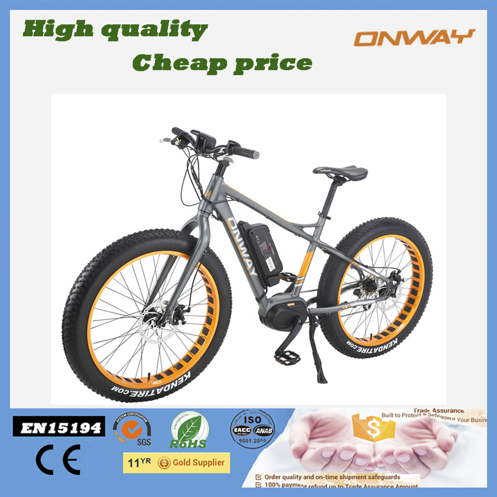 big tires strong power beach electric bicycles for sale