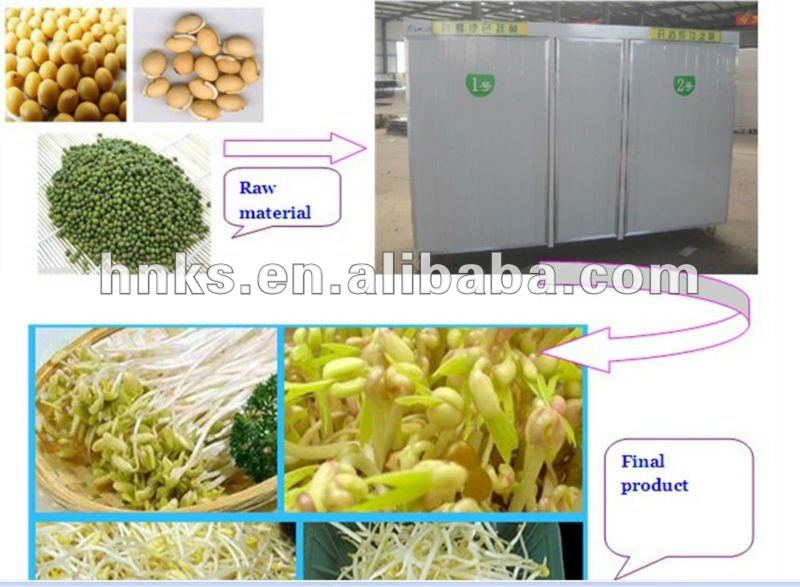 automatic yellow bean sprouting machine price