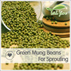 Common Cultivation Green Mung Beans For