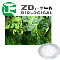 chinese herb name Duzhong plant / Cortex Eucommiae leaf Extract powder