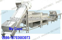 Automatic Electrical Vegetable/Fruit Washing & Disinfection Line, fruit and vegetable blanching machine 0086-18703683073