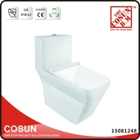 Eastern Dual Flush WC Ceramic Toilet