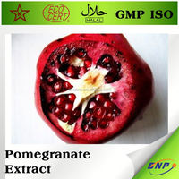 organic pomegranate seed extract powder