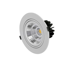 Round/Square Surface Mounted Led Zhongshan 30W COB Led Downlight