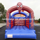 Hot Sale Cartoon Theme Inflatable Bouncer for Kids