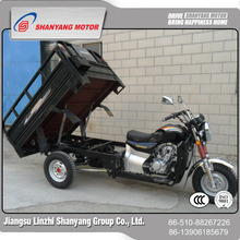 200CC Cargo Trike Moped Pricing Three Wheels For Sale