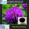 Pure Natural Plant Extract Red Clover P.E. 60% Total Isoflavones
