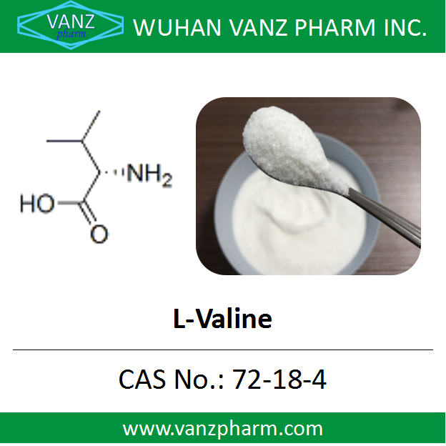 Factory Sell Best Price L-Valine Powder CAS 72-18-4