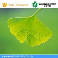 Ginko Biloba Extract 24% Total flavone glycosides/6% Total ginkgolides(lactones)