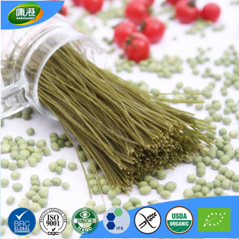 OEM organic green bean pasta quick cooking extra long indomie noodles spaghectti
