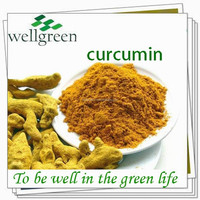 high quality herb extract turmeric root extract herb medicine Curcumin 95%