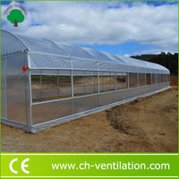 Greenhouse Design Germany Original Anti-UV plastic greenhouses for sale