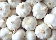 Chinese high quality fresh pure white garlic or normal white garlic fresh garlic specification