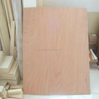 best price 17mm wbp glue laminated fancy plywood for home door