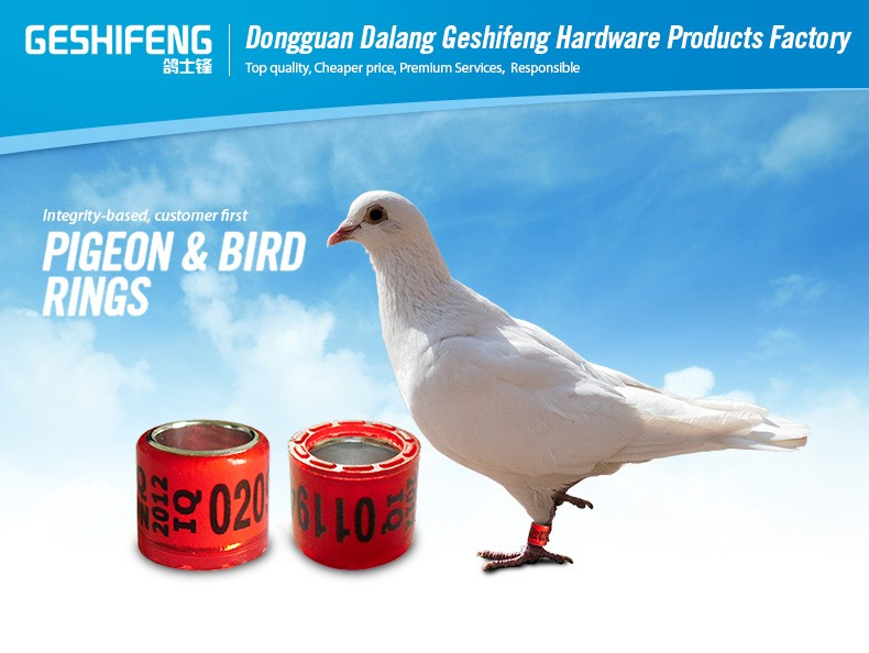 aluminium ring pigeon pigeon racing club with ring pigeon leg ring