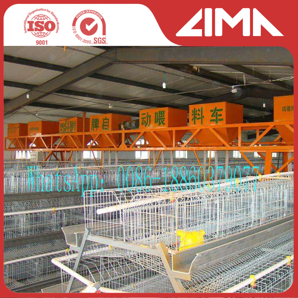 high quality chiken egg poultry farm equipment/Guangzhou chicken cage for sale with best price