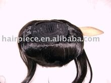 clip-on/clip-in fringe/bangs/wig/human hair extension