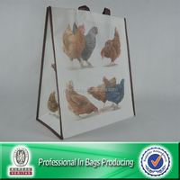 Custom Printed Vinyl Shopping Bags Non Woven Bags