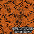 water transfer printing Hydrographic technology Crazy Tiger GWR002, width 100 cm