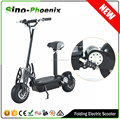 HOT SALE evo el scooter 800W with CE ( PES01-36V800W )